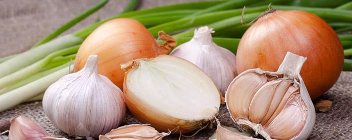 Risultati immagini per aglio e cipolla