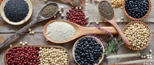dieta a base di proteine vegetali